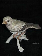 +*A010558_06 Goebel Archiv Muster Vogelwelt Fink Finch TMK5 Plombe 38-09/14