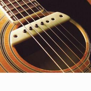LR Baggs M1 Active Body-Sensitive Active Magnetic Guitar Soundhole Pickup