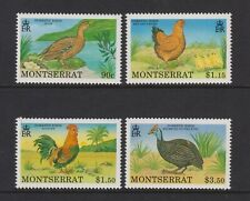 Montserrat - 1991, Domestic Vögel Set - MNH - Sg 847/50