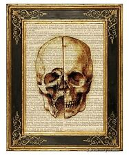 Da Vinci's Skull Study Art Print on Vintage Book Page Home Office Decor Gifts
