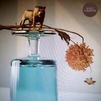 Beirut - Gallipoli (NEW CD ALBUM)