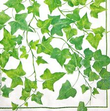 M801# 3 x Single Paper Napkins For Decoupage Green Ivy Rambler Creeper Pattern