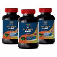 Antioxidant Booster - Blue Green Algae 500mg from Klamath Lake B12 (3 Bottles)