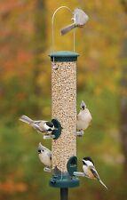 Bird Feeder Aspects Seed Tube Birdfeeder with Quick Clean Base. Spruce