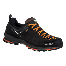 Salewa Mens Mountain Trainer 2 GTX