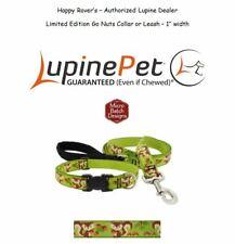"Lupine Lifetime Guaranty Dog Leash or Collar -1""- Acorns & Squirrels - GO NUTS"