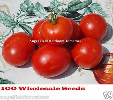 100 Aker West Virginia Heirloom Tomato Seeds Organic Wholesale Historical Seeds