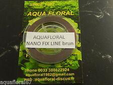 Moss riccia ligne fil de nylon 10 mètre brun  fixation mousse et bucephalandra