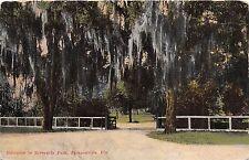 Harrisonburg Florida Entrance To Riverside Park Postcard 1910s