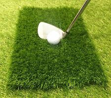 Winter Rules Golf Fairway Chipping Mat Protect Your Course Spring Clip Free Del