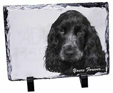 Blue Roan Cocker 'Yours Forever' Photo Slate Christmas Gift Ornament, AD-SC25ySL