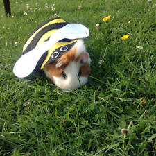 Guinea pig costume- Bumble Bee. Small pet costume