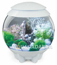 biOrb Halo 15 Aquarium With MCR - White