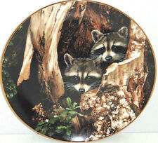 Racoon Plate Curious Pair Hamilton Collection Collector Ron Parker 1988 Vintage