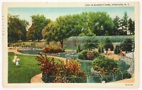 Postcard Syracuse NY Zoo In Burnett Park Fenced Pond Family New York 1930's