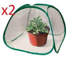 2 X Mini Pop Up invernadero fuera patios dentro de la cubierta verde planta casa plantas