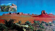 Reptile Vivarium,Tarantula Vivarium, Reversible Desert Background 150CM L X 60CM