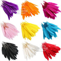 50pcs 4-7 inches Natural Colorful Goose Feathers 10cm to15cm Home Decorations
