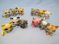 Littlest Pet Shop Lot 3 Random Blemished Kitten Cats Shorthair Persian Authentic