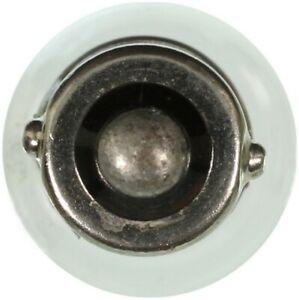Wagner Lighting BP1895 Ignition Light Bulb