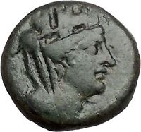 TARSUS in CILICIA 2-1stCenBC Tyche Sandan Lion Pyre Ancient Greek Coin i41483