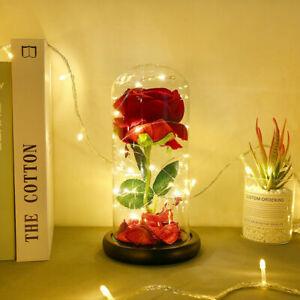 Rose im Glas:Die Schöne und das Biest LED Muttertag Valentinstag Liebe Geschenk