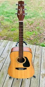 Vintage 1990's Peavey Tupelo Dreadnought Acoustic guitar D-18 solid top NICE