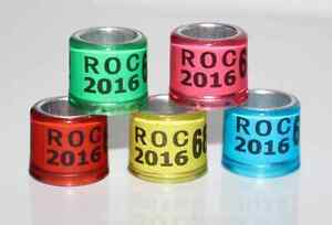 50pcs*7mm/8mm customized with name phone number year bands for pigeon ring