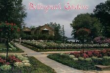 Bellingrath Gardens and Home, Theodore, near Mobile, Alabama, Flowers - Postcard