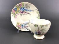 E. Brain & Co. FOLEY bone china cup & saucer # 7817A made in England c.1948+