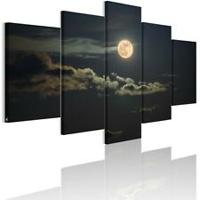 Full Moon Night Canvas Wall Art Prints Painting Picture Unframed 5x/set