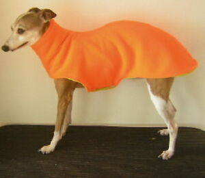 *CUSTOM* ANY SOLID COLORS ITALIAN GREYHOUND SPEEDO COAT with matching SNOOD