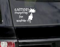 Caution Mandrake baby on board potter kids funny car/bumper sticker/vinyl