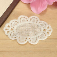 1X Cotton Embroidery Flower Sew Iron On Patch Badge Clothes Fabric Applique
