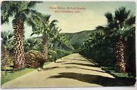 McNeil Ranch Glendora Ca California Palm Drive Vintage Postcard Western Novelty