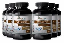 Water Pill Herbal Weight Loss Healthy Urinary Tract Bladder Kidneys (6 B) SE