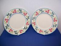 "Johnson Bros Farmhouse Kitchen Meadow Daisy 2 Dinner Plates (10.75"") England"