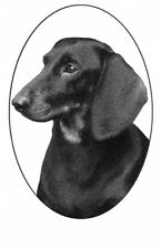 "4""X6 Dachshund static cling etched glass window decal"