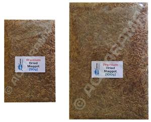 Premium Dried Maggot Food for Fish, Koi, Turtles, Amphibians [You Choose Size]