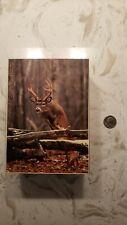 PREOWNED Deer Buck Wooden Cedar Jewelry Treasure Chest Box Wildlife Trees Gift