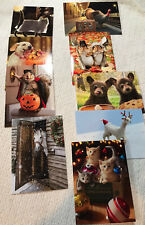 NEW LOT OF 24 AVANTI ADORABLE ANIMAL GREETING CARDS & ENVELOPES FOR HOLIDAYS