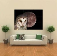 OWL AT NIGHT WITH THE MOON  NEW GIANT POSTER WALL ART PRINT PICTURE X1389