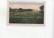 B82351 san paulo brazil Nova Odessa corn & rice plantation   front back image