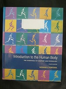 Introduction to the Human Body: The Essentia... by Tortora, Gerald J.,  Hardback