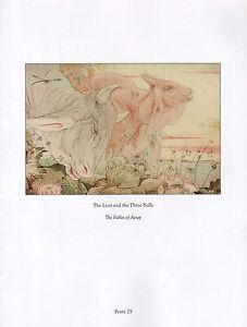Schöne Vintage Vogel Aufdruck Der Löwe & die Drei Bulls Fables Von Aesop Detmold