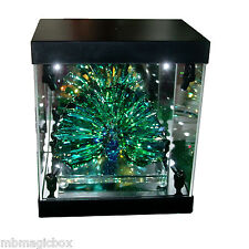 Acrylic Display Case Light Box for Swarovski Crystal Peacock Arya Annual Edition