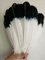 Newest hot pheasant feather black 10-100 pcs scarce natural 28-33 cm /11-13 inch