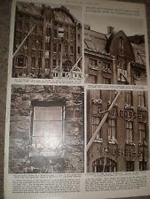 Photo article Kittiwake problem in Aalesund Norway 1956 ref Z