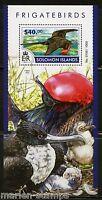 SOLOMON ISLANDS 2015 FRIGATE BIRDS  SOUVENIR SHEET   MINT NH