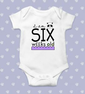 Six Weeks Old Today Baby Bodysuit   Baby Shower Gift   Cute Baby Clothes   Funny